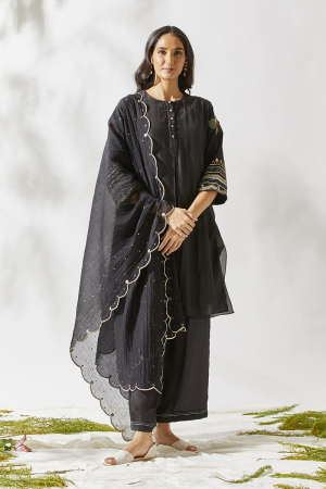 Applique sleeves kurta set