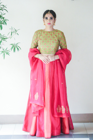 Light green, chanderi hand embroidered paneled lehenga set