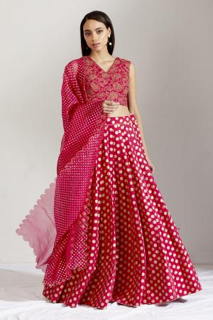 Rani Pink Batasha Lehenga set