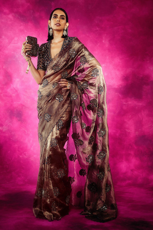 Brown Embroidered Saree with Blouse