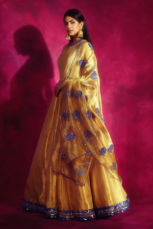 Gold Embroidered Anarkali with Dupatta